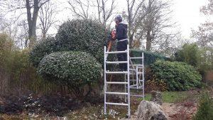 Welkom bij Tricke, een gedreven tuinaannemer voor tuinaanleg en tuinonderhoud - Tuinen Tricke